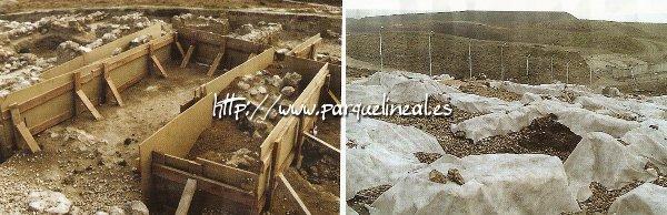 preparación arqueológica