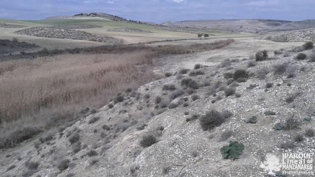 Arroyo y Camino del Congosto