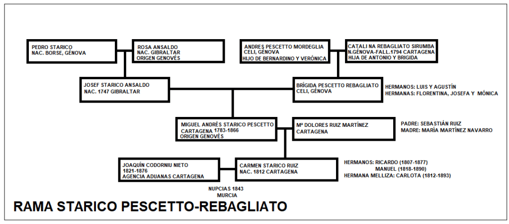 genealogía rama familiar